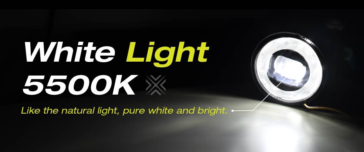 FOG LIGHT - WHITE LIGHT
