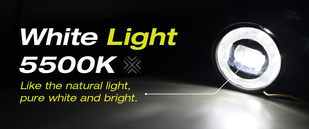 WHITE LIGHT- FOG LIGHT